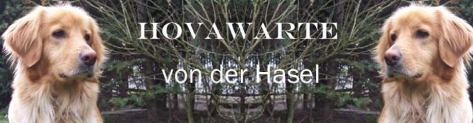 (c) Hovawartevonderhasel.de