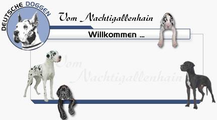 (c) Doggen.tv